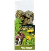 JR Farm Grainless Mini Hartjes