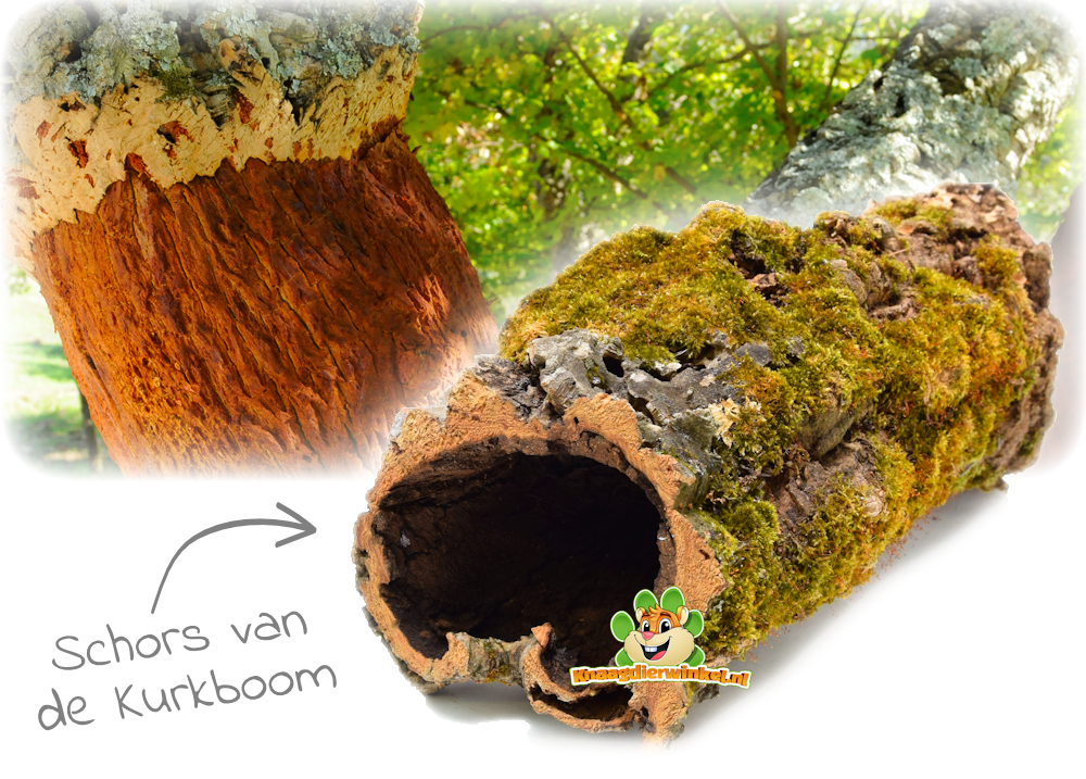 cork tunnel for rodents mouse, dwarf hamster, hamster and gerbil made from the cork tree