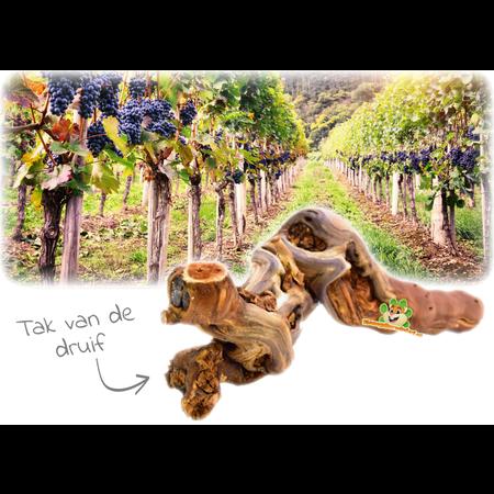 Trixie Gezandstraalde Wijnrank L