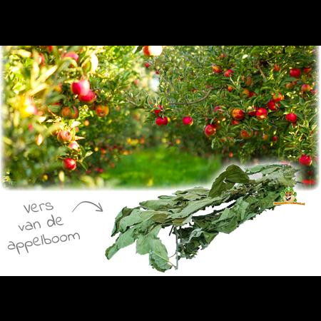 JR Farm Apfelbaumernte