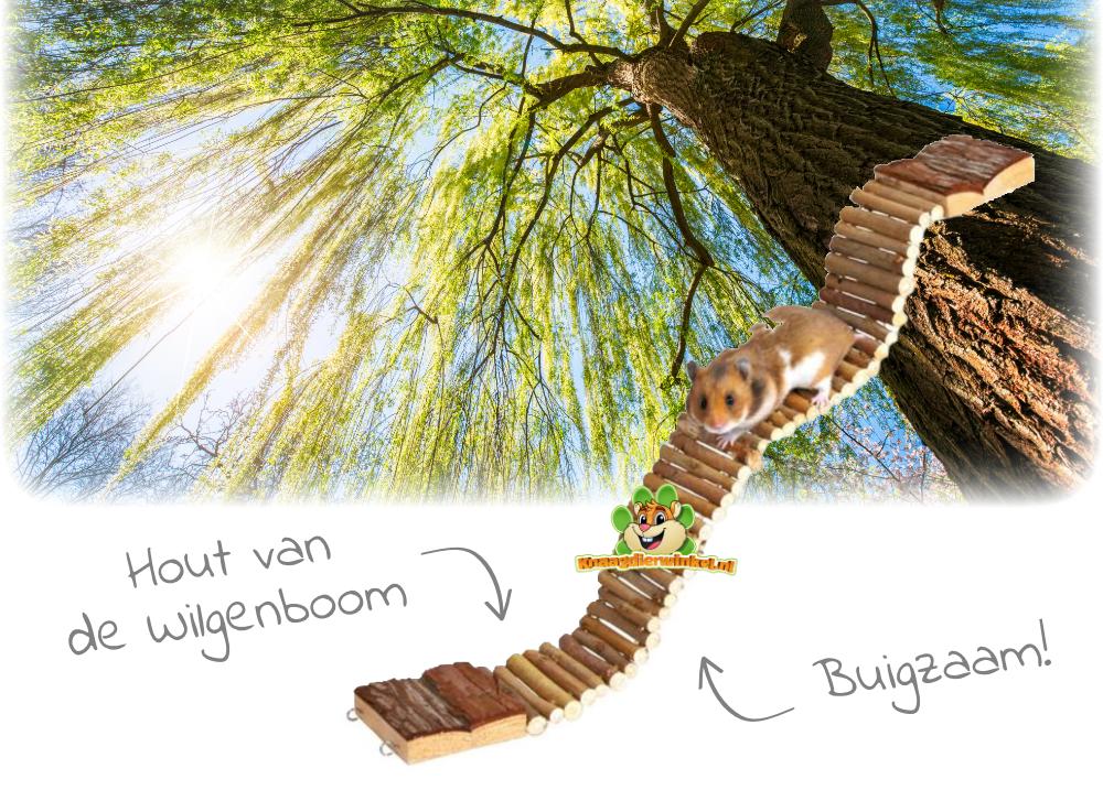 houten wilgenbrug voor kleine knaagdieren zoals muis en hamster