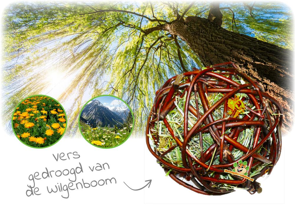 Weidenball mit Bergwiesenheu und Ringelblume