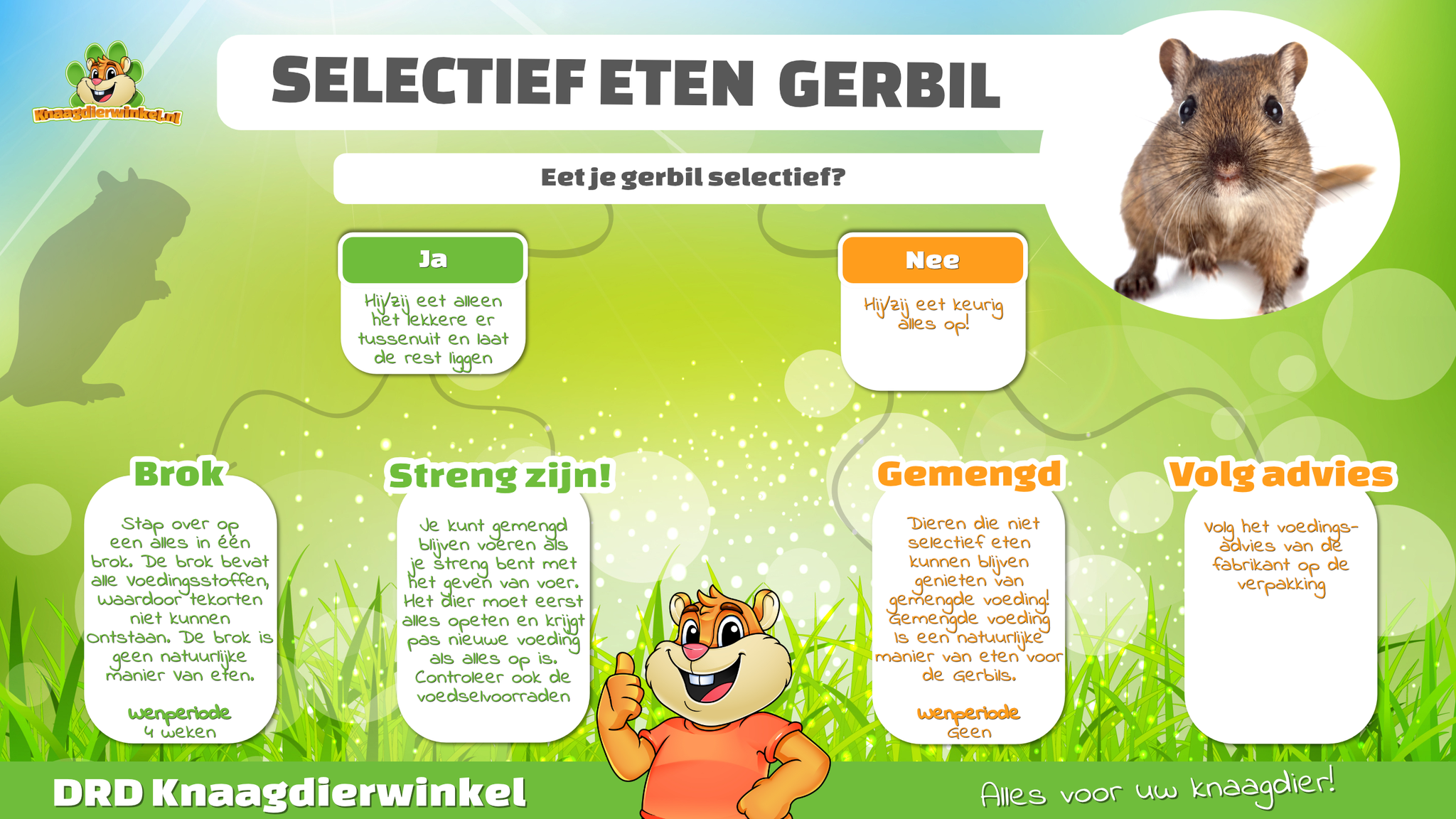 Gerbil food selectively eat gerbil food
