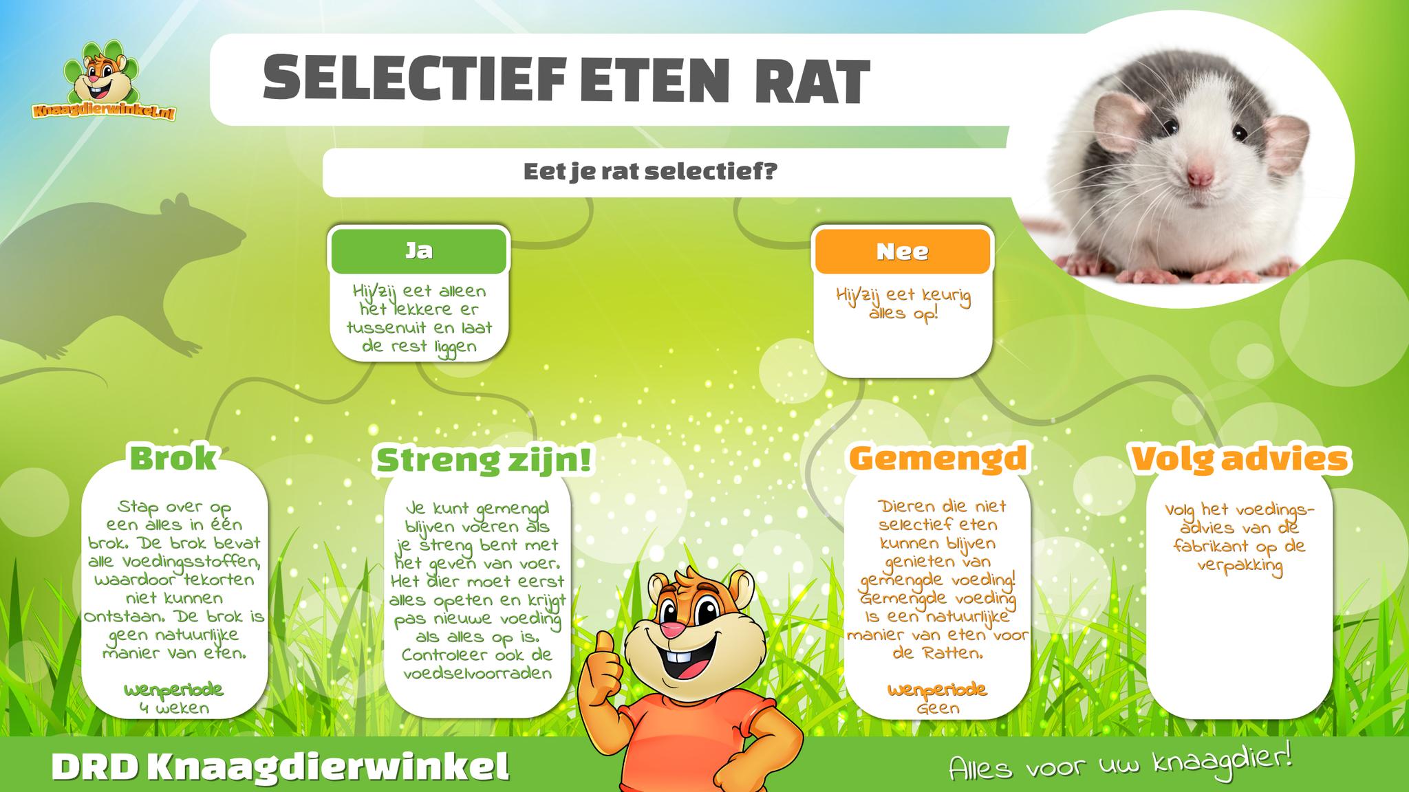 Rattenvoeding selectief eten ratten