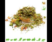 Getrockneter Gemüsegarten