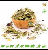 Knaagdier Kruidenier Dried Herbs & Fruit Mix