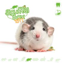 Snuffelbox Rat #01