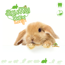 Snuffle Box Rabbit #03
