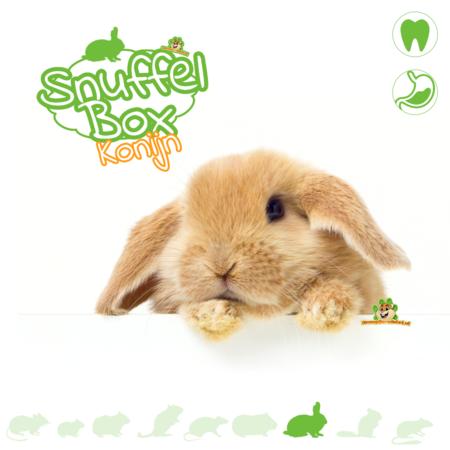 Knaagdierwinkel® Sniffing box Rabbit # 01