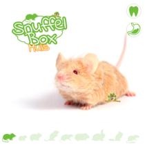 Snuffelbox Muis #02