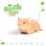 Knaagdierwinkel® Schnüffelbox Maus # 02