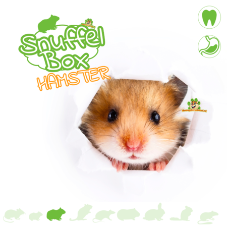 Knaagdierwinkel® Sniffing box Syrian Hamster # 04