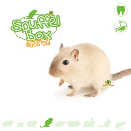 Knaagdierwinkel® Snuffle box Gerbil #02