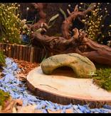 Trixie Shelter-Felsen 17 cm