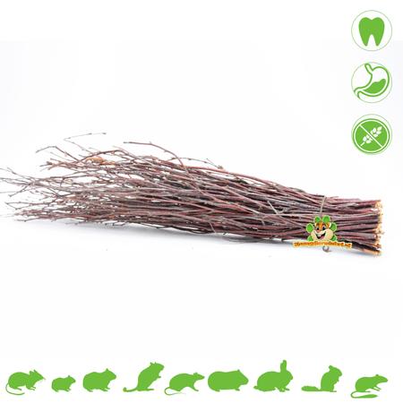 Hugro Nibble Broom Birch