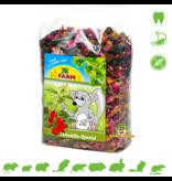 JR Farm Chinchilla Special 500 grams