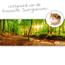 Knaagdierwinkel® HD Terrarium Hintergrund Lebensraum des russischen Zwerghamsters