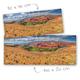 Knaagdierwinkel® HD Terrarium Achtergrond Leefgebied van de Roborovski Dwerghamster