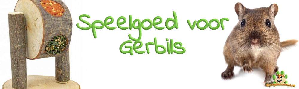 Gerbil toys and toys for gerbils in the gerbil webshop