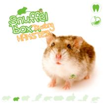 Snuffelbox Dwarf Hamster # 04