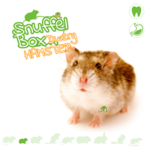 Snuffelbox Zwerghamster # 04