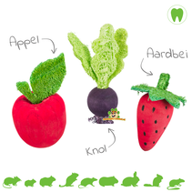 Gnawing Wood Fruit & Vegetable Toys