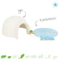 Iglo met Koelsteen 15 cm