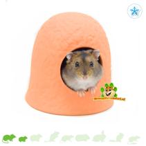 Terracotta Dwarf Hamster Igloo
