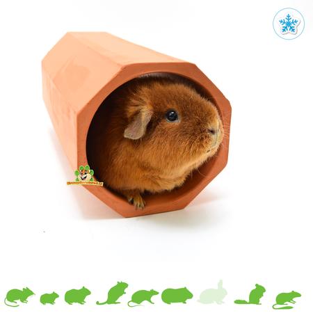 Terracotta Rodent Tunnel Round 34 cm