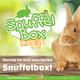 Knaagdierwinkel® Snuffle Box Rabbit #03