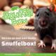 Knaagdierwinkel® Snuffelbox Rat #02