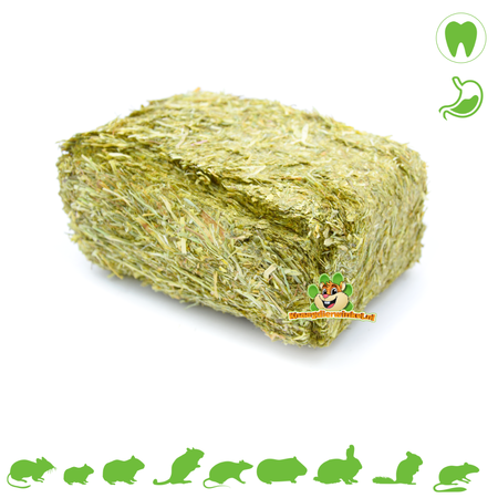 Knaagdierwinkel® Pre Alpin Weidekruiden Grasblok