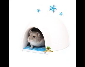 Hamster Sommerprodukte