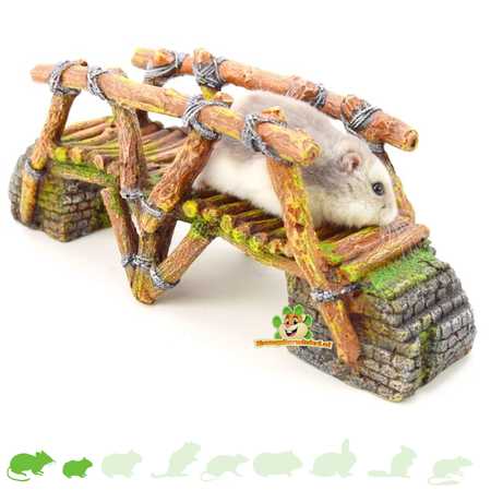 Hamsterscaping Dschungelbrücke 25 cm