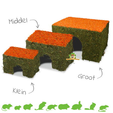 JR Farm Mountain Meadow Hay House with Carrot Roof