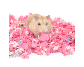 Hamster Ground Cover