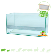Rodent Terrarium with lid