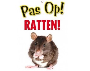Ratten Gifts