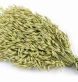Puik Snacks Haverschoof 55 grams