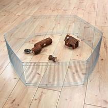 Maus- und Hamsterlauf