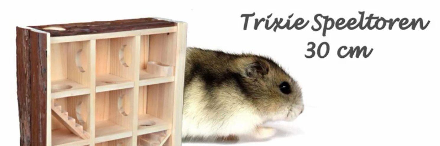 Hamstertjes in de Trixie Speeltoren