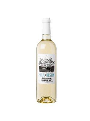 Domaine Sainte Marie des Crozes - Le Clandestin Sauvignon blanc - 2017