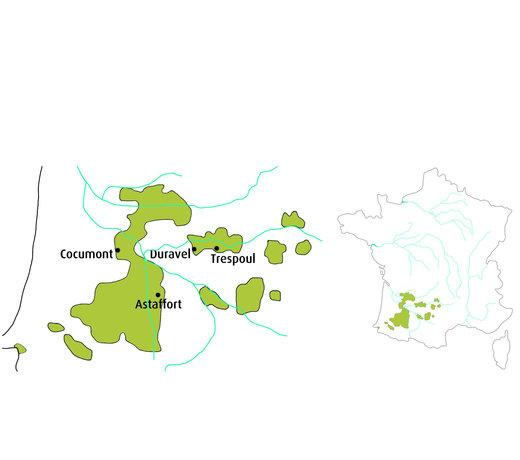 Selectie van onze wijnen uit Sud-Ouest