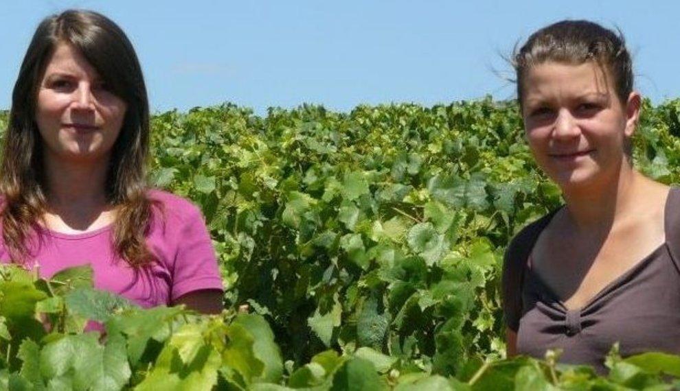 Chablis, het oesterwater en het noordelijkste wijngebied van de Bourgogne