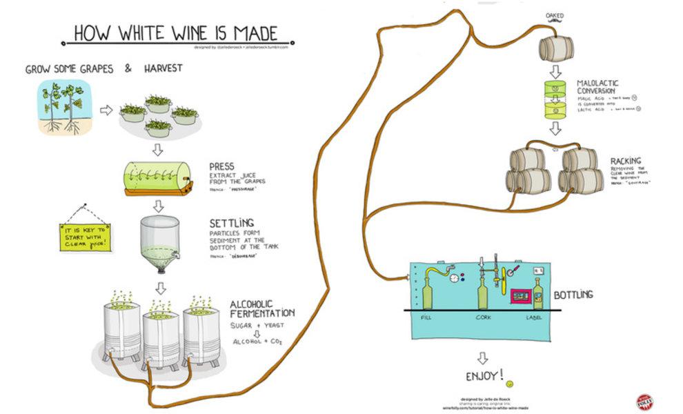 Vinificatie van witte wijn