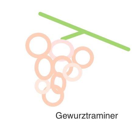 Selectie van onze wijnen met de gewuüztraminer druif