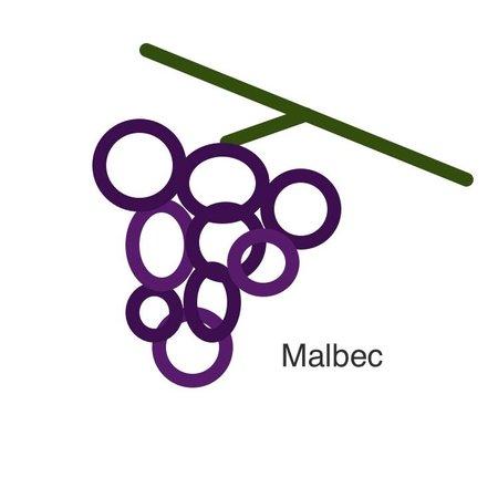 Selectie van onze wijnen met de malbec druif