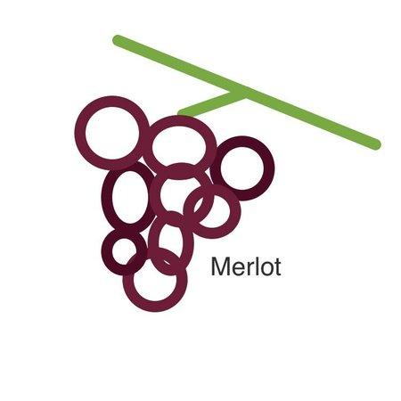 Selectie van onze wijnen met de merlot druif