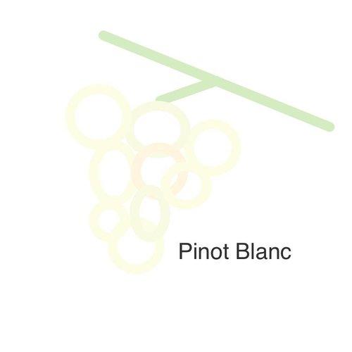 Selectie van onze wijnen met de pinot blanc druif