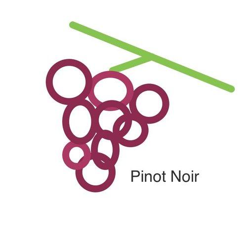Selectie van onze wijnen met de pinot noir druif